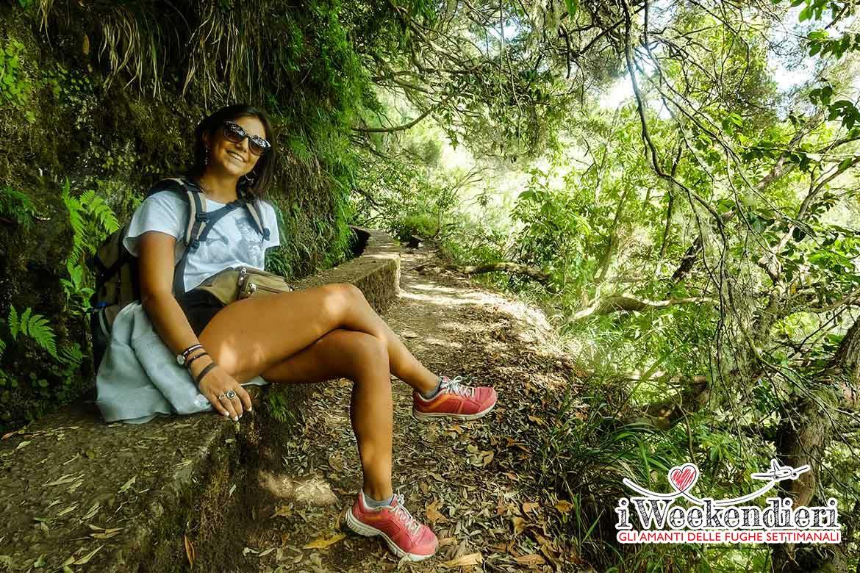 Calderao Verde Madeira