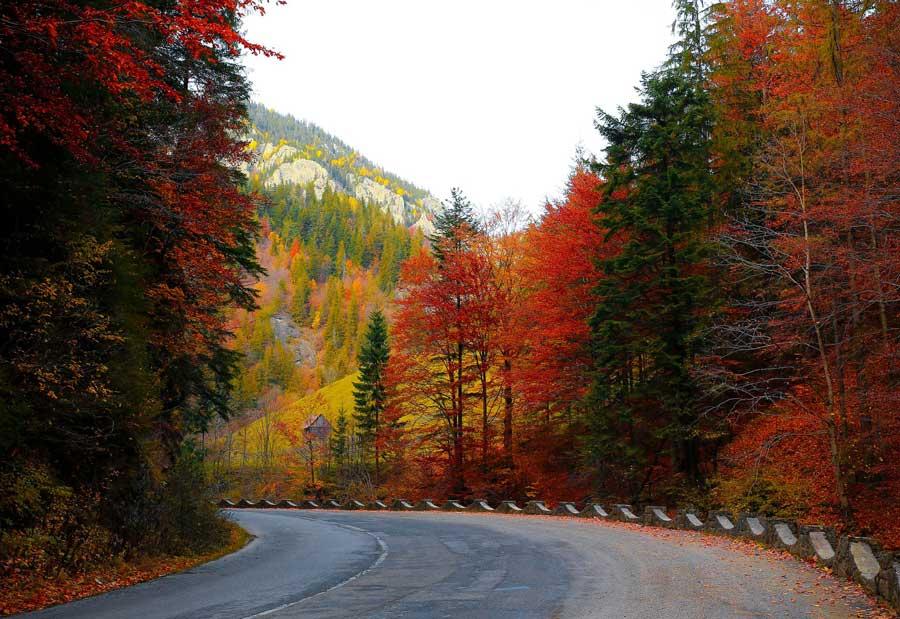 canzoni per viaggiare in autunno