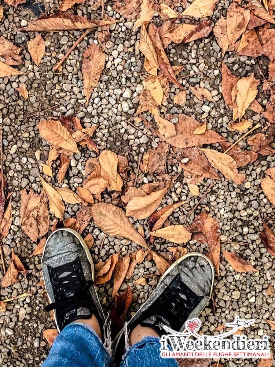 foliage emilia romagna